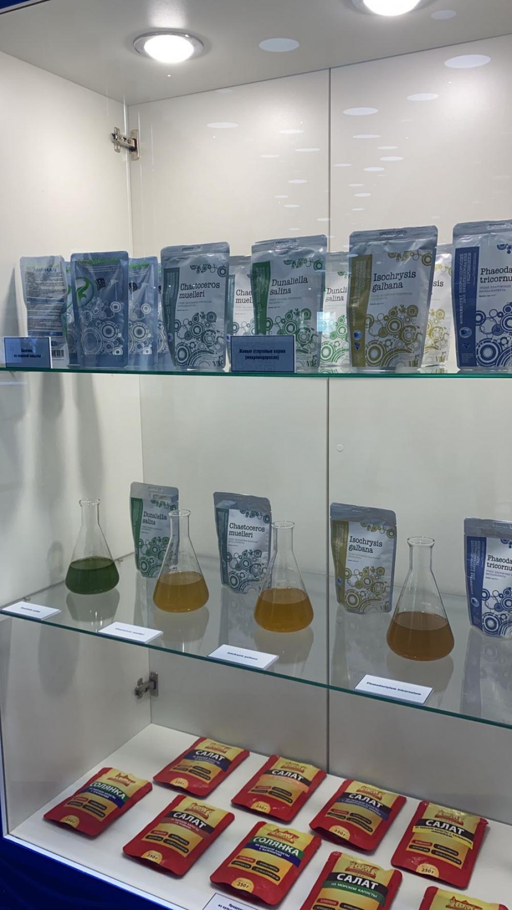 Наука представила достижения на главной отраслевой выставке
